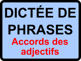 Dictées de phrases - cycle 3 - Accords des adjectifs