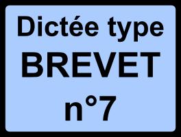 Dictée type Brevet n°7 - Emile Zola, Au Bonheur des dames, 1883.