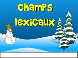 Le bonhomme de neige - le champ lexical